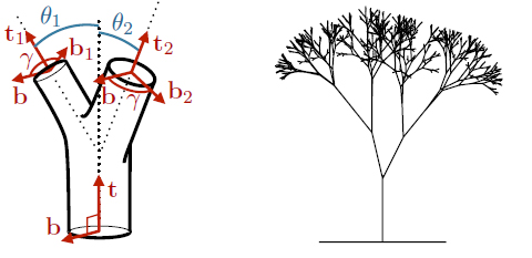 Tree branches and trunks follow Da Vinci's Rule (image courtesy Christophe Eloy, University of Provence)