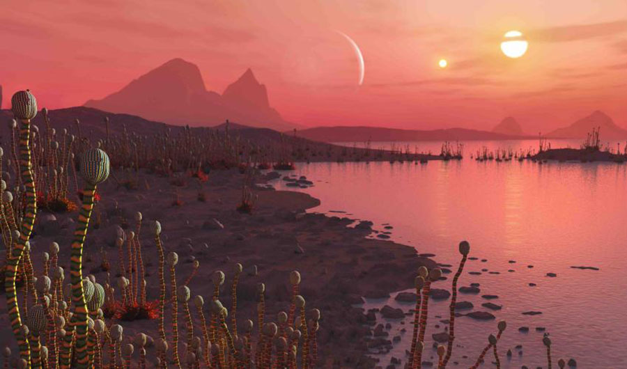A peachy illustration of an alien world. In the foreground, an outcrop of strange multicolored plants. In the distance, two suns are visible in the sky.