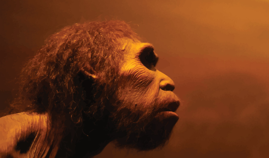 Neanderthal DNA Unearthed from Dirt