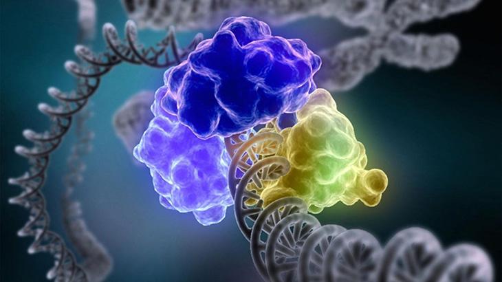 2015 Nobel Prize Winners for the study of DNA repair.