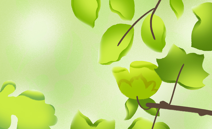 Hand drawn image of bright green leaves in the early spring. Credit: Abigail Malate