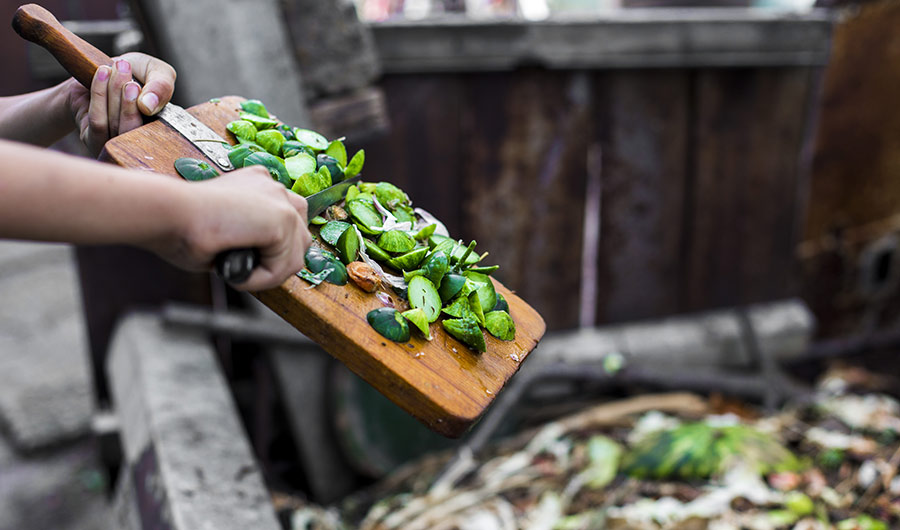 Image of person discarding vegetable scraps