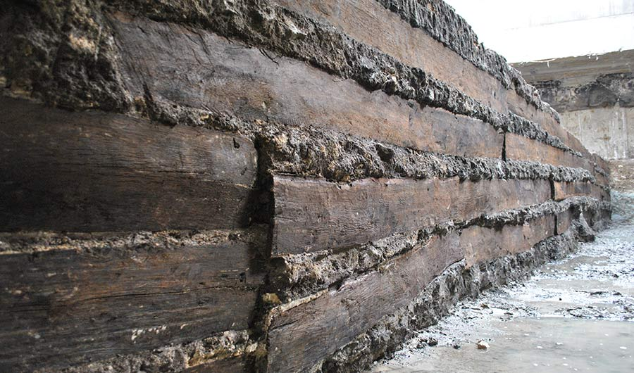 Muddy Find Shows How Foreign Timber Helped Build Ancient Rome