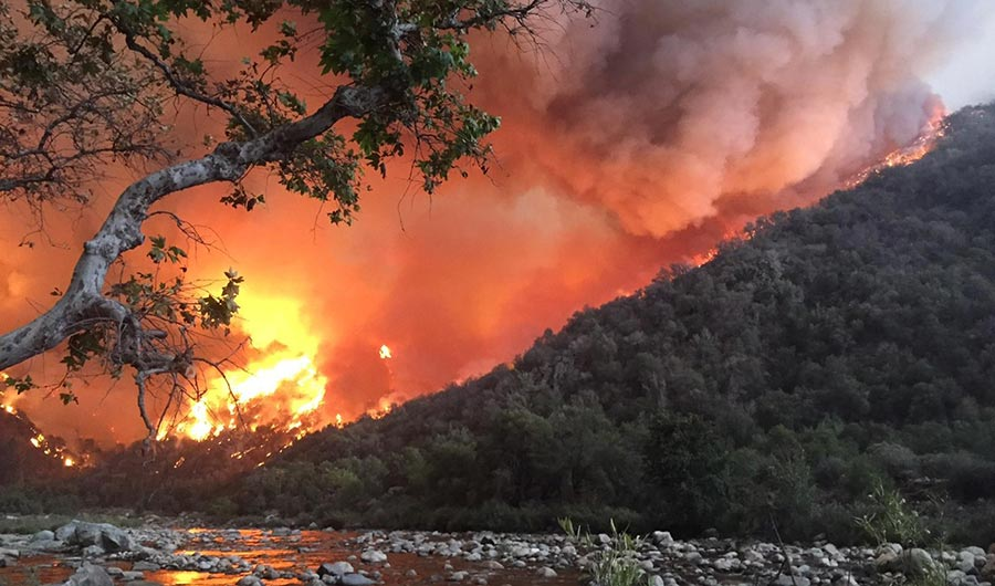 Photo shows a stream in the foreground as a forest fire burns on a mountainside.
