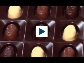 Looking for the best chocolate? Chocolate DNA Testing