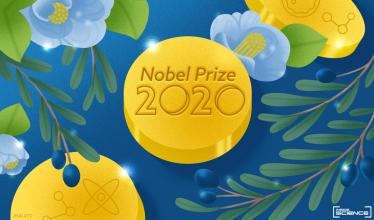 Nobel 2020 artwork