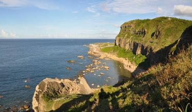 Image of cliffs by the seashore, where fossilized burrows from an ancient worm were found.