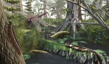 Artist's impression of a Devonian landscape