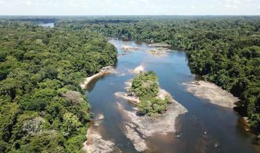 The image shows a dense forest, interspersed with a river and islands.