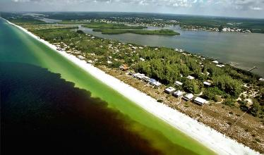 Red tide approaching beach