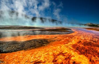 The colors of Yellowstone's hot springs come from microbes called thermophiles, which flourish in the boiling water.